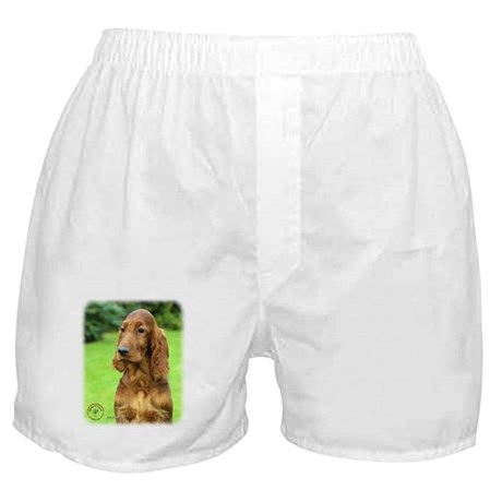 Irish Setter 9T004D-349 Boxer Shorts