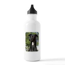 Greyhound 9R022-146 Water Bottle