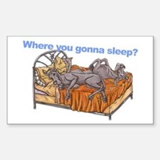 NC Blu Where you gonna sleep Decal