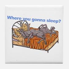 NC Blu Where you gonna sleep Tile Coaster