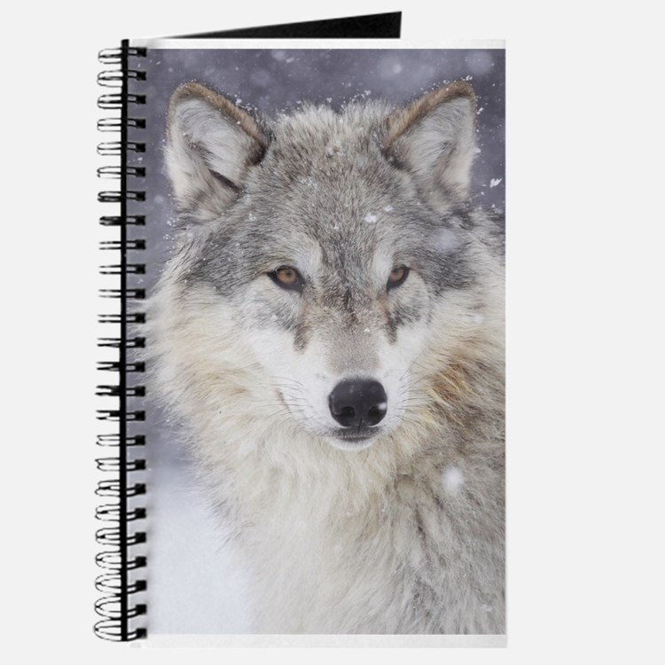 Snow Bound Journal