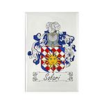 Solari Family Crest Rectangle Magnet (10 pack)