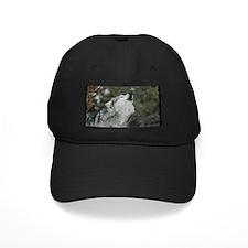 Call Of The Wild Baseball Hat