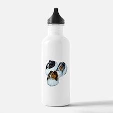 Sheltie Headstudys Water Bottle