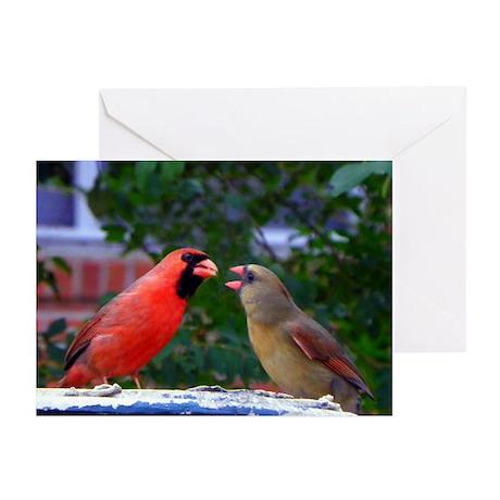 Cardinals Greeting Cards (Pk of 10)