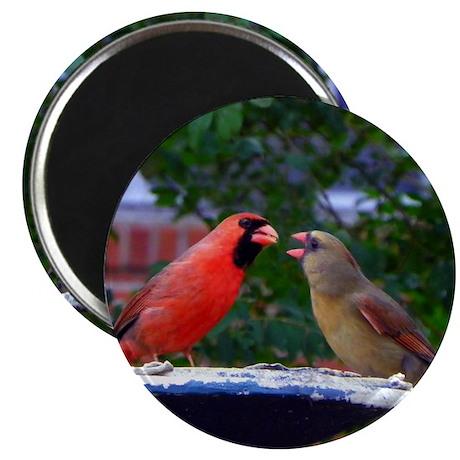 "Cardinals 2.25"" Magnet (100 pack)"