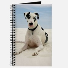 GREAT DANE BEACH Journal