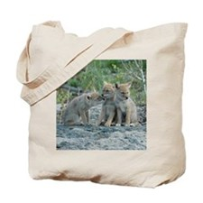 The Amigos Tote Bag