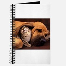 Dogs and cats Journal