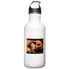 Dogs and cats Water Bottle