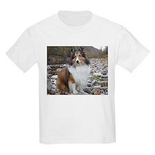 Sable Sheltie Hiker T-Shirt