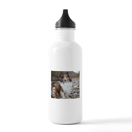 Sable Sheltie Hiker Stainless Water Bottle 1.0L