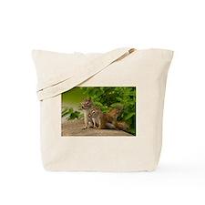 Unique Squirrel Tote Bag
