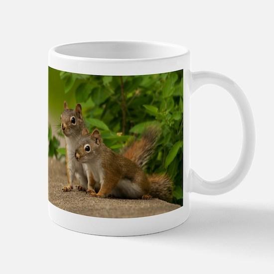 _DSC0395 Mugs