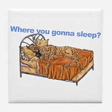 CBr Where you gonna sleep Tile Coaster