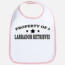 Property of Lab Bib
