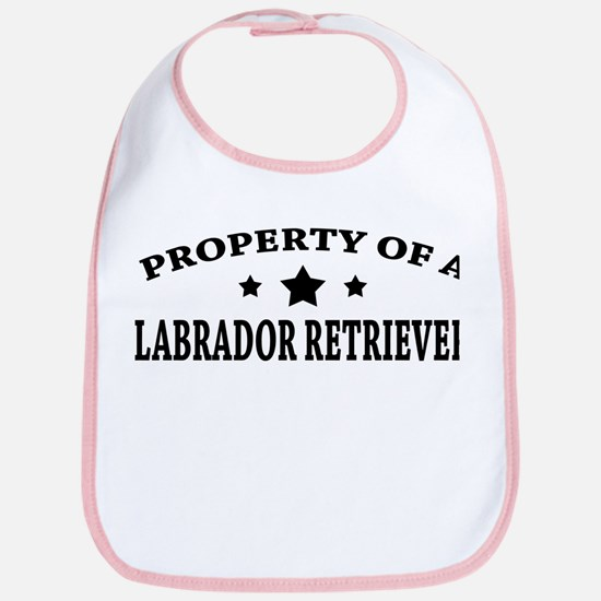 Property of Lab Bib