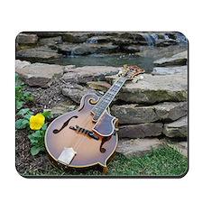Mandolin and Water Falls Mousepad