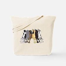 NC Split Show Tote Bag