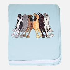 NC Split Show baby blanket