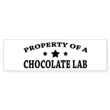 Property of Chocolate Lab Bumper Bumper Sticker