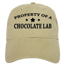 Property of Chocolate Lab Baseball Cap