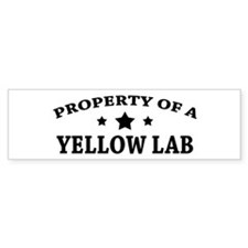 Property of a Yellow Lab Bumper Bumper Sticker