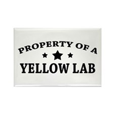 Property of a Yellow Lab Rectangle Magnet