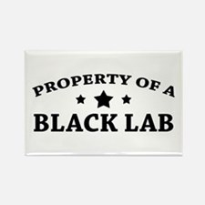 Property of a Black Lab Rectangle Magnet