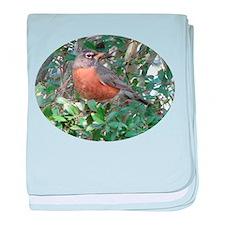 Cute Robin redbreast baby blanket