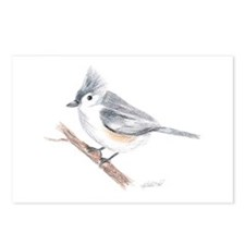 Tufted Titmouse Postcards (Package of 8)