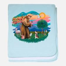 St.Francis #2/ C Crested #1 baby blanket