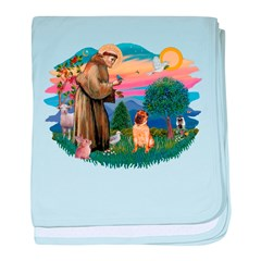 St.Francis #2/ Shar Pei (#2) baby blanket