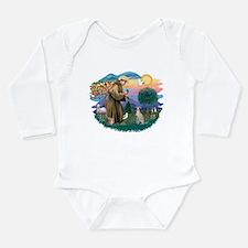 St.Francis #2/ Ital Grey (f) Long Sleeve Infant Bo