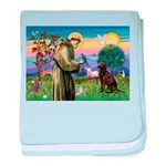 St Francis Chocolate Lab baby blanket