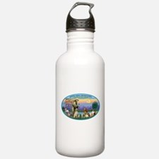 St Francis / dogs-cats Water Bottle