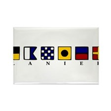 Funny Georgia Rectangle Magnet (100 pack)