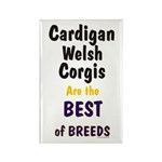 Cardigan Welsh Corgi Best Rectangle Magnet (10 pac
