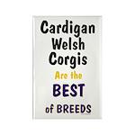 Cardigan Welsh Corgi Best Rectangle Magnet (100 pa