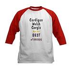 Cardigan Welsh Corgi Best Kids Baseball Jersey