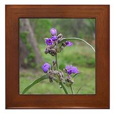 Beautiful Flower Framed Tile