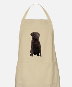 BBQ Apron w/ chesapeake bay retriever