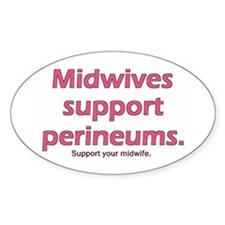 """Midwives Support"" Decal"