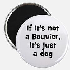 If it's not a Bouvier, it's j Magnet