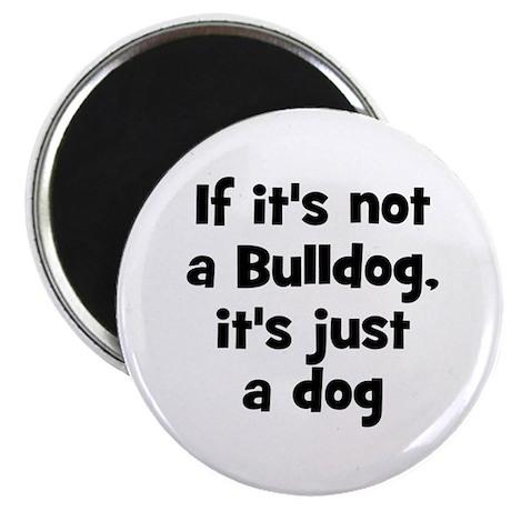 If it's not a Bulldog, it's j Magnet