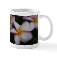 Cute Plumeria Mug