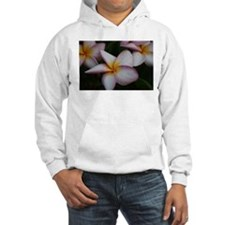 Funny Art photography Hoodie