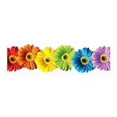 Rainbow Daisies 42x14 Wall Peel