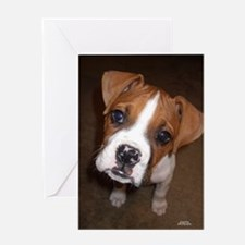 Unique Boxer greeting Greeting Card