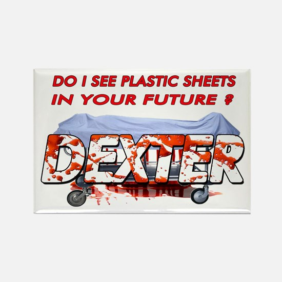 Dexter ShowTime Do I see plas Rectangle Magnet